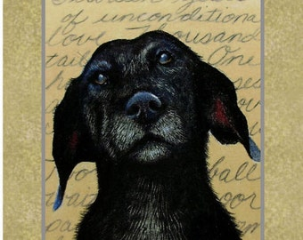 Set Of Four Old Dog Greeting Card Art by Melody Lea Lamb