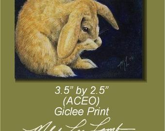 Lop Eared Bunny by Melody Lea Lamb ACEO Mini Art