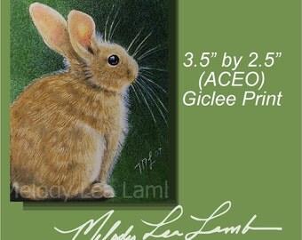 Bunny Rabbit Miniature Art by Melody Lea Lamb ACEO Miniature Print
