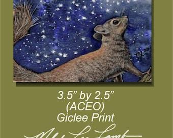 Squirrel Wildlife Art Melody Lea Lamb ACEO Print