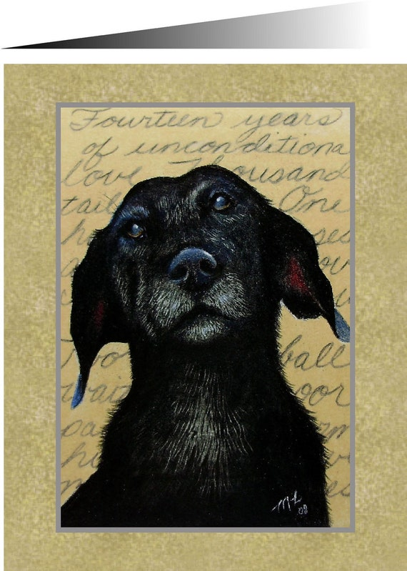Old Labrador Greeting Card from Original Art by Melody Lea Lamb