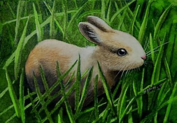Baby Bunny in Spring Grass Miniature Art by Melody Lea Lamb ACEO Giclee Print