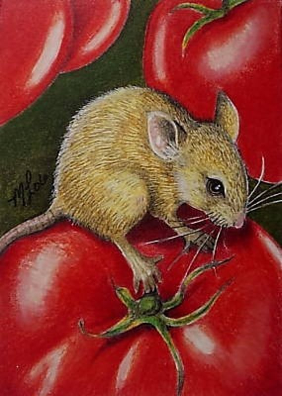Mouse and Garden Tomato Art Melody Lea Lamb ACEO Print #469
