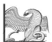 antique Eagle and Snake print, pen and ink drawing, vintage printable digital image no. 612