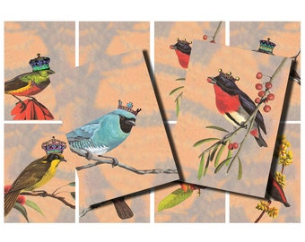 vintage birds with crowns, printable digital collage sheet no. 409