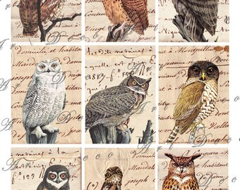 wise old owls digital collage sheet no. 379