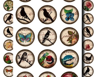 victorian flowers and birds on antique text digital collage sheet no. 69