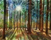 Forest Landscape Nature Zen Art Print  Forest Landscape Karin's Forest