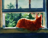 Online watercolor lessons - beginner tutorial - Learn to paint your pet tips ideas my secrets