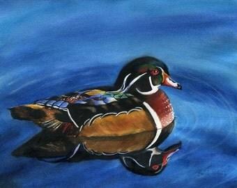 Wood duck art nature print mens gift