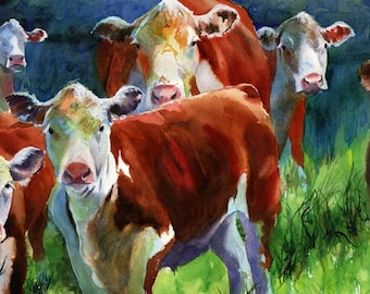 Hereford Cow Art painting Print of my watercolor painting Curious Cows