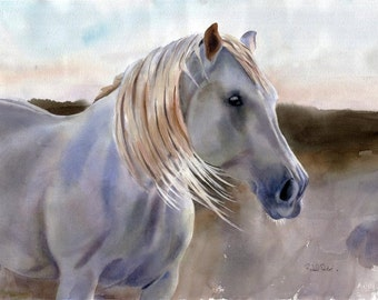 Large Giclee Andalusian White Horse Print