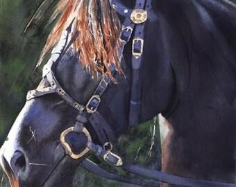 Friesian Horse Art black Print of my watercolor painting art digital file hand painted custom large huge big giclee Morgan Arabian