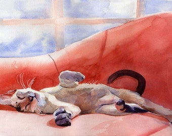 Oriental Lynx Tabby Siamese Cat Art Print of my watercolor painting    Next Act
