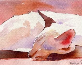 Lilac Point Siamese Cat Art Print of my Original Watercolor     ..Asleep..