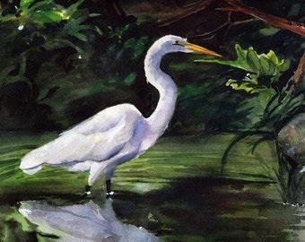 Egret Marsh Bird Art Print of my watercolor painting of a Charleston Egret