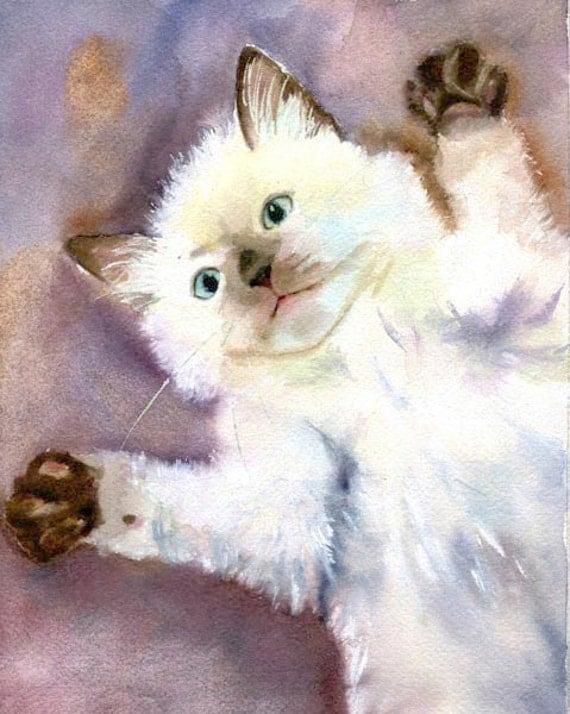Siamese Cat art - Original Watercolor Painting of a Ragdoll kitten Artwork Artist