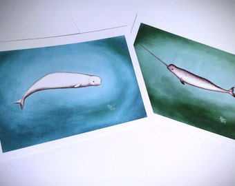 Narwhal and Beluga Whales Print Set - 5 x 7 by Jess Purser
