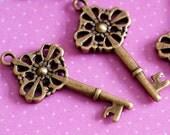 Sale 6pcs Antique Bronze Key Charms EA10902Y-AB