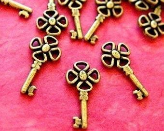 Sale 24pcs Antique Bronze Key Charms (21mm ) YJ-1539