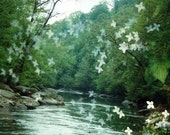 river flora: nature photography. surreal photograph. dreamy photo. flower photo. enchanted forest fairytale woods. multiple exposure photo.
