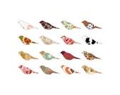 Patterned birds - 5x7 print -