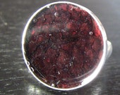Sterling Silver, Blood Red Fish Leather Geometric Ring - Christian Jewelry - Circle Size 7 - HOOKED on JESUS