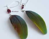 Feather Earrings-Blue and Green McCaw feathers with Garnet Beads