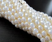 PEARL 3mm by 4mm Rice Smooth White Freshwater Bead Strand 15 inches LAST ONES