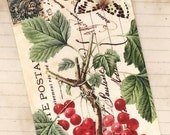 Butterfly and Berries -  Gift Tags - Vintage Style by Bluebird Lane