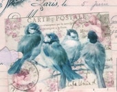 Bluebird Gift Tags , Vintage Blue Birds ,  Pink Roses ,  Aqua , Bird Tags