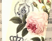 Note Card Set -  Vintage -  Romantic  - French Rose by Bluebird Lane