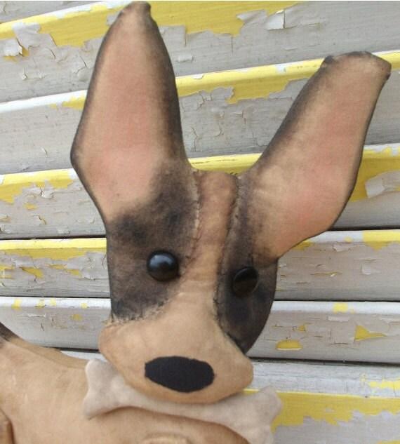 Primitive Chihuahua Chico