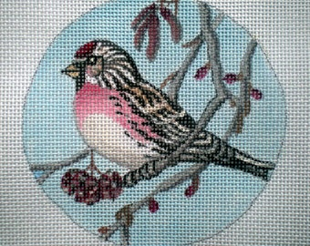 Handpainted Redpoll Pine Siskin Needlepoint canvas