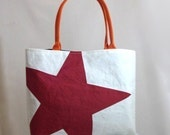 Recycled Sail Purse  - Red Star