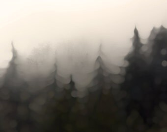 Assuage : Photographic Print, of rustic mountainous forest east of Seattle WA, softly blurred for a warm, smokey, romantic and dreamy feel.