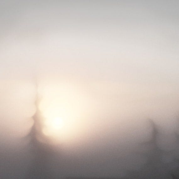 As a child in light : Photographic Print of trees against a sky of warm misty, smokey, foggy light creating a romantic, dreamy experience.