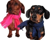 Eco Pet Scarf - Recycled Fleece - Large