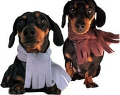 Eco Pet Scarf - Recycled Fleece - Small