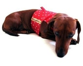Eco Dog Harness - Renewable Red Dot Cotton - Large