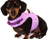 Eco Dog Harness - Purple Hearts - SM