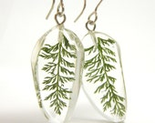 Yarrow Leaves Resin Earrings, floral earrings, Earrings with leaves