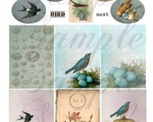 TiffanyJane-For the Love of Birds Collage Sheet Instant download for art tags embellishments paper art