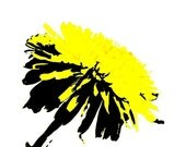 You Are My Sunshine Pop Art Print in double white matt wall decor art in yellow and black