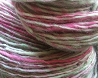 Ooak Skein of LITTLE SPRING FLOWER Handspun and Hand Dyed Single Ply Worsted Yarn 238 Yards Wool