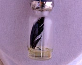 Vial Pendant Necklace w feather, mustard seed faith