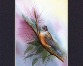 Wild Life 5x7in.(12 1\/2cm x 17 1\/2cm) Matted Print Keep Sake Card Ready for Framing 15
