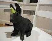 Surprise Party (Rabbit)