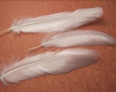 25 WHITE Satinette Goose Feathers