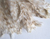 Bleached Chinchilla Feathers, 3 Inch Strip